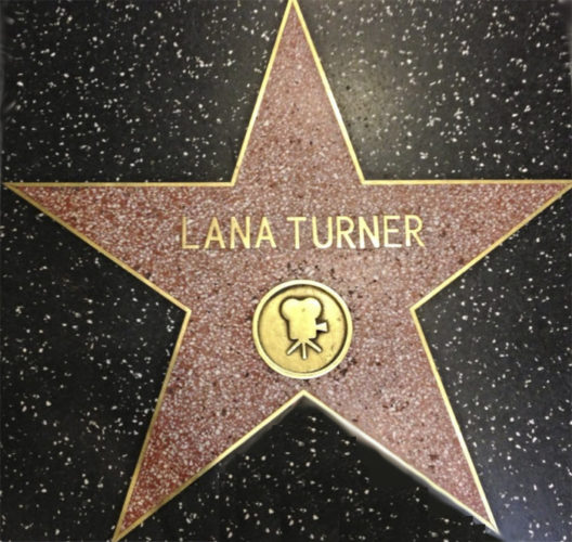 Walk Of Fame - Hollywood Star